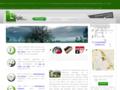 Effigie Créations, Développement web